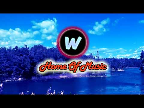 Calvin Harris Feat. John Newman - Blame (Tombs Remix)