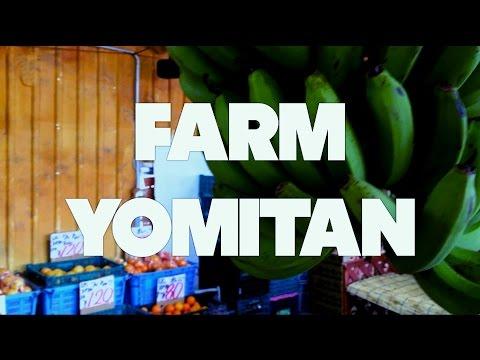 Farm Yomitan - Okinawan Farmer's Market