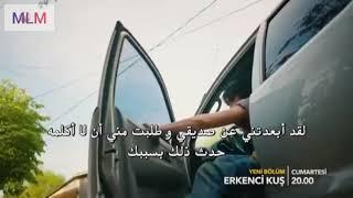 الطائر المبكر الحلقة 41 مترجم للعربية.