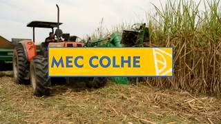 Colhedora de Cana-de-Açúcar Inteira MEC COLHE - MECMAQ