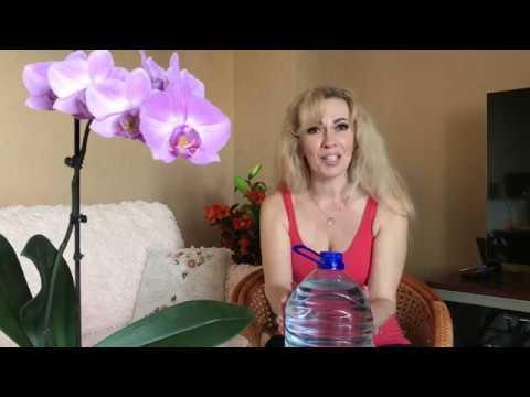 Моё супер удобрение!...  Открытая система ПОСАДКИ и открытая система СОДЕРЖАНИЯ орхидей.