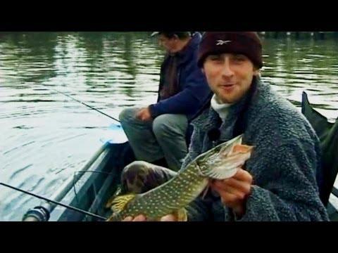 ловля судака на джиг на реке