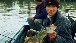 видео Расстановка жерлиц при ловле щуки