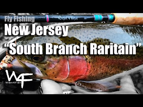 "W4F - Fly Fishing New Jersey ""South Branch Raritan River"""