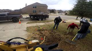 STUMP REMOVAL DENTON TX