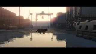 A Cat at Dawn - Eternal Light Trailer
