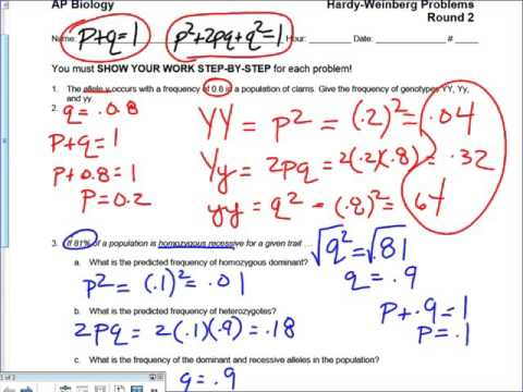 Hardy Weinberg Problems Step by Step