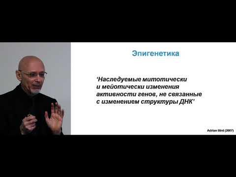 Александр Вайсерман Лекция 1. Эпигенетика