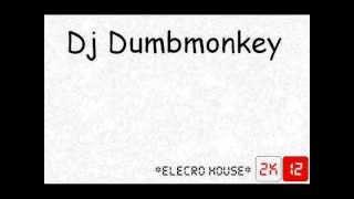 Dj DumbMonkey ElectroHouse 2k12