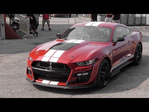 2020 Shelby GT500: LOUD REVS + Walkaround