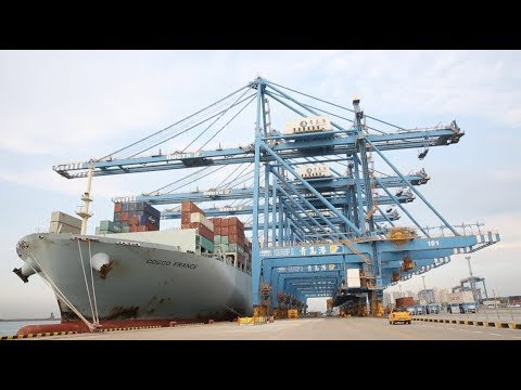 Qingdao's Fully Automated Port Sets Operation Efficiency Record