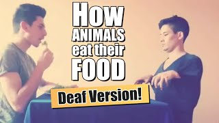 How Animals Eat Their Food (DEAF VERSION)