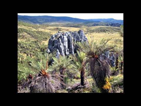 Seven Summits - Carstensz Pyramid