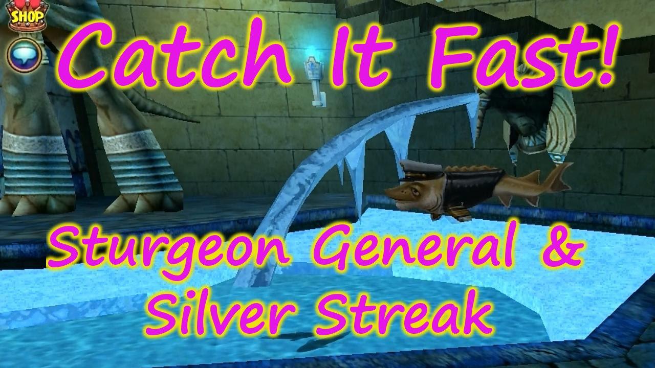 Wizard101: Fishing Catch It Fast Sturgeon General & Silver Streak