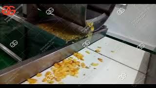 Automatic Potato Chips Making Machine Factory Video