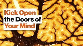 Brain Bias: Why Not to Emulate Geniuses and Their Rigid Thinking Processes | Barbara Oakley