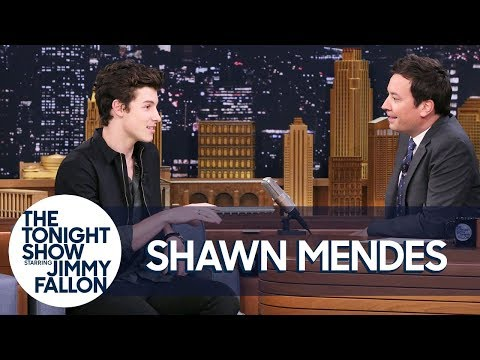 Shawn Mendes Got Roughed Up by Drake's Security Team
