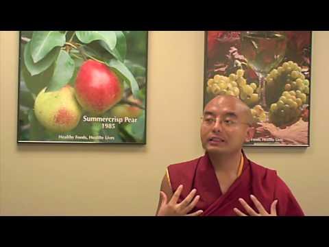 Interview with Yongey Mingyur Rinpoche, meditation master