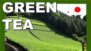 Japan tea farmers - Walking in Japan 日本茶農家 - 日本でのウォーキング