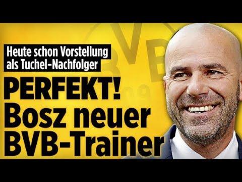 Ajax Bosz neuer Dortmund-Trainer / MMA-Fighter / Carmen Geiss - Aktuelle Nachrichten 6.6.17