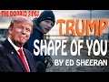 Donald trump singing shape of you by ed sheeran mp3
