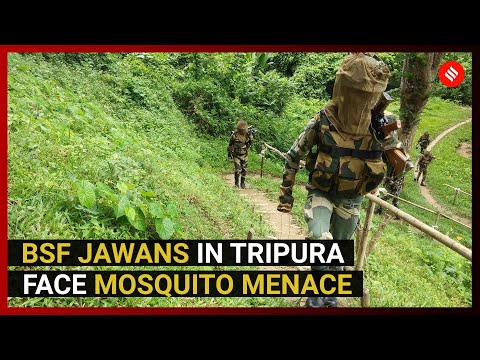 In Tripura, BSF personnel on patrol need more than guns to stay safe