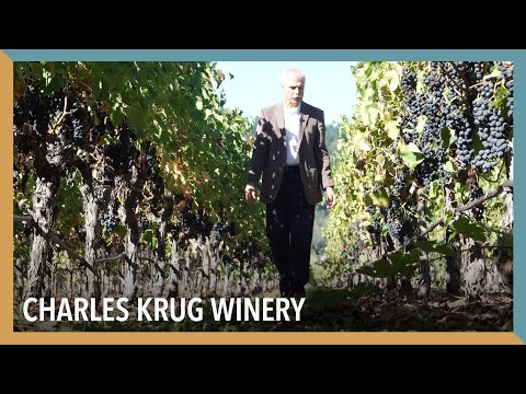 The Oldest Winery In Napa Valley | VOA Connect