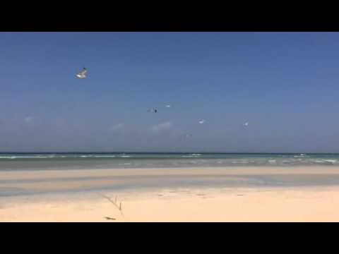 Bosaaso beach Somalia