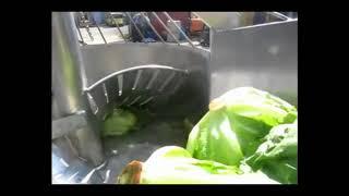 Cabbage slicing 5 mm