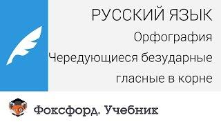 Скачать Русский язык Орфография Чередующиеся безударные гласные в корне Центр онлайн обучения Фоксфорд