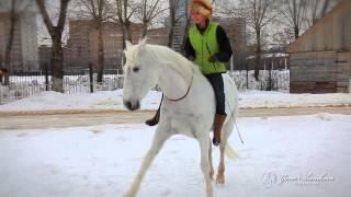 Яна Шаникова  - дрессура лошадей на свободе!