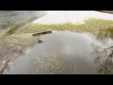 Dji Phantom Quadcopter flight with GoPro