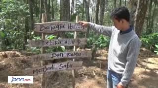 Sensasi Berwisata di Rumah Pohon Hutan Pinus Gunungsari - JPNN.COM