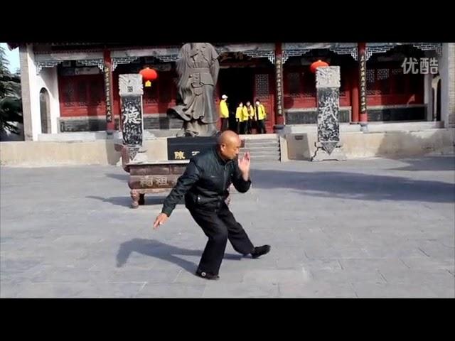 Chen Ji - Tai Chi style Chen Laojia Yilu