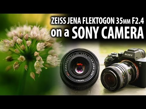 Zeiss Jena Flektogon 35mm F2.4 On A Sony Camera - M42 To Sony E-mount Lens Adapter