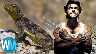 Top 10 Incredible Animals with Legit Superpowers