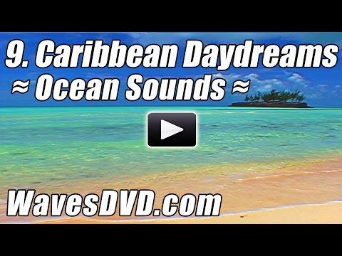 9 - CARIBBEAN DAYDREAMS WAVES DVD six 10 min loopable scenes video relaxing ocean sounds best beach