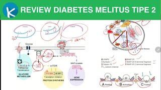 Faktor Penyebab Anak Terkena Diabetes Melitus Tipe 1 *** Visit our Website: http://nakita.grid.id/ F.