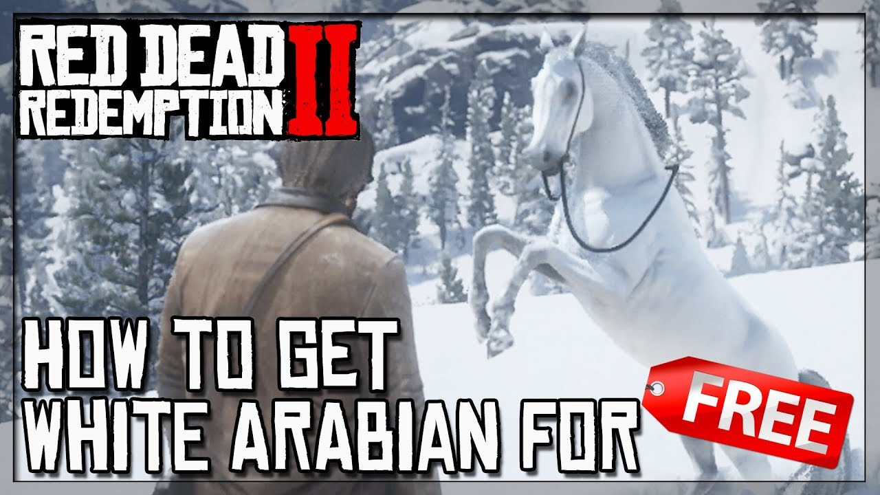Rdr2 White Arabian Horse For Free How To Get Best Horse In Rdr2