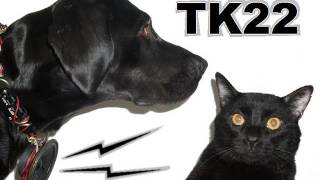 Talking Kitty Cat 22- Dogs Can