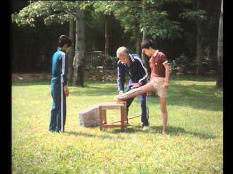 master hou family iron chi kung
