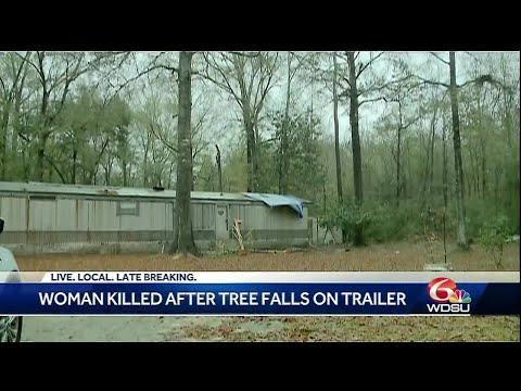Tangipahoa Parish woman killed when tree falls on trailer