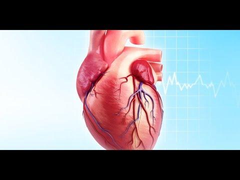 Dr  M G Desai on Heart Disease