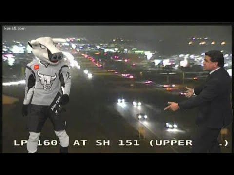 T-bone does traffic reporting at KENS 5