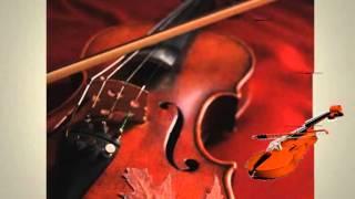 Menuett from string quintet in E