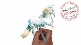 Как нарисовать лошадь поэтапно простым карандашом за 24 секунд(Как нарисовать картинку поэтапно карандашом за короткий промежуток времени. Видео рассказывает о том,..., 2014-07-23T04:53:58.000Z)
