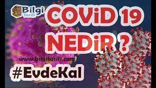 Corona Virüsü (Covid-19) Nedir ? - Nasıl Korunulur ? - #EvdeKal
