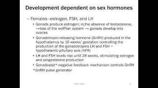 Review of Development of the Reproductive System icon
