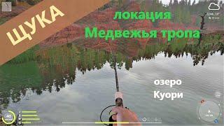 Русская рыбалка 4 озеро Куори Щука на мелководные воблеры