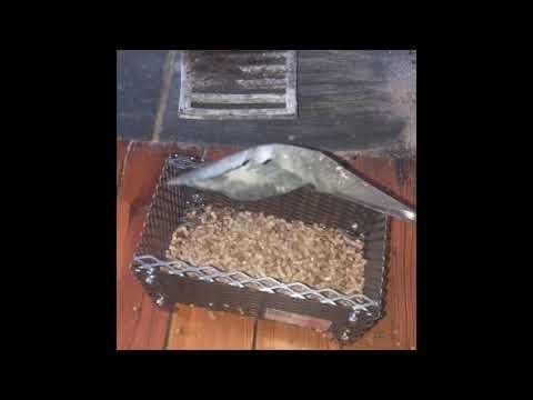 Wood Pellet Basket Review